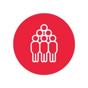 The Five Behaviors™ Authorized Partner | Paramount Potentials